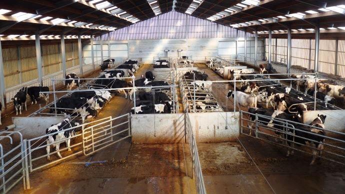 image Bâtiments d'élevage