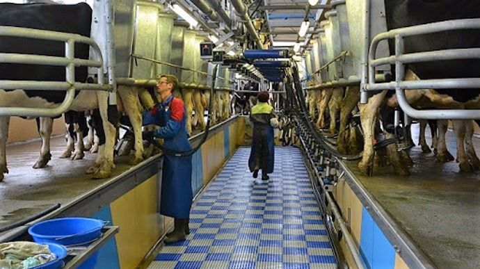 image Emploi en élevage