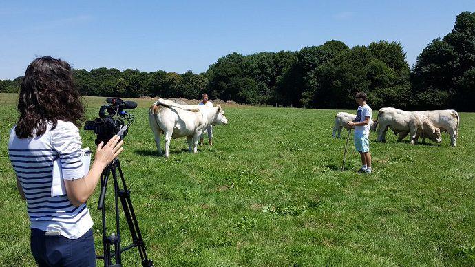image Reportages en élevage