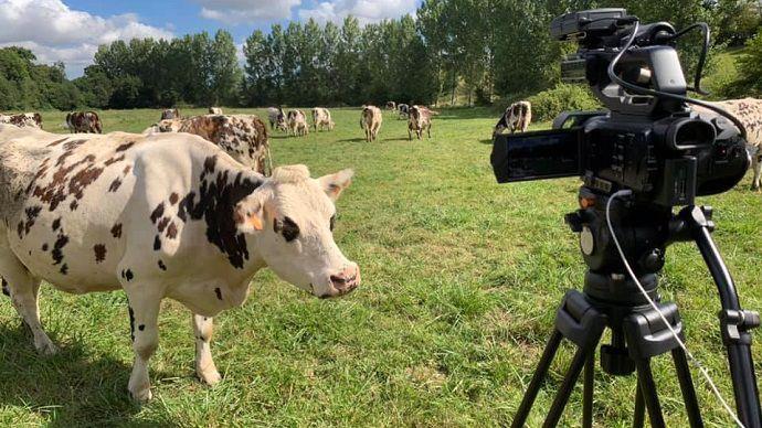 image Vidéos Web-agri